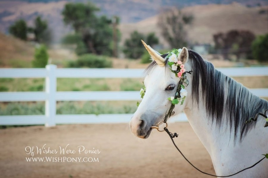 Gold Unicorn Horn for Horse Pony