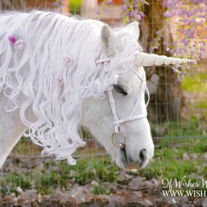 WishPony Ivory Unicorn