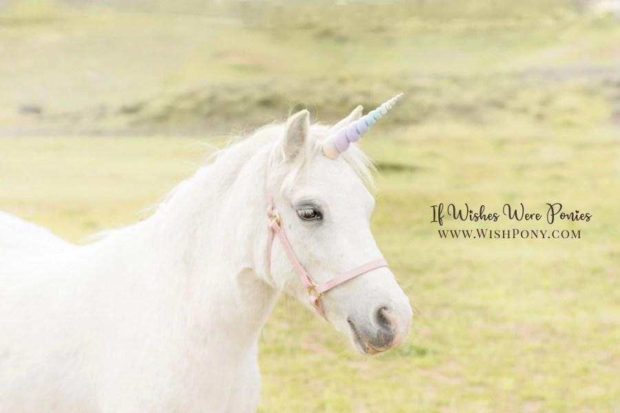 Child-safe rainbow unicorn horns by Wishpony.com