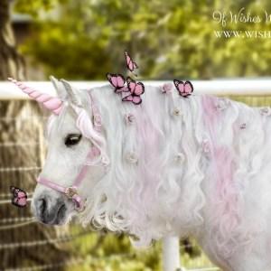 WishPony PInk Unicorn Horn