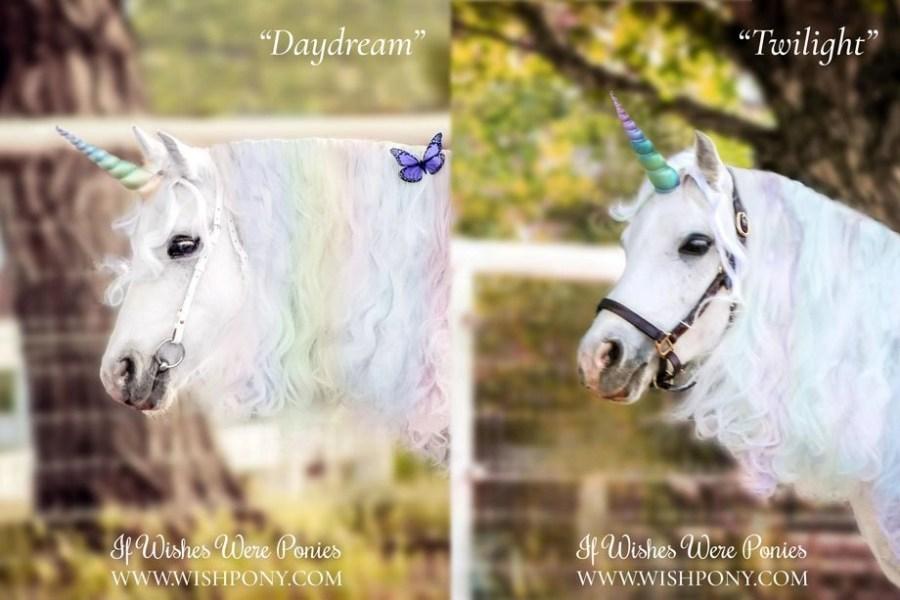 WishPony Rainbow Unicorn Horn for Horse Pony