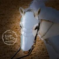 Horse Pony Battle Armour Chamfron