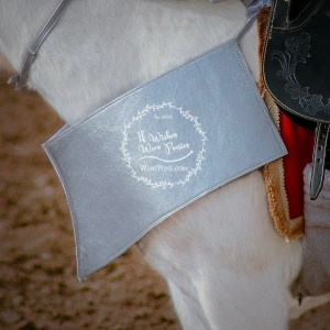 WishPony Horse Pony Costume Armour Pointed Breastplate