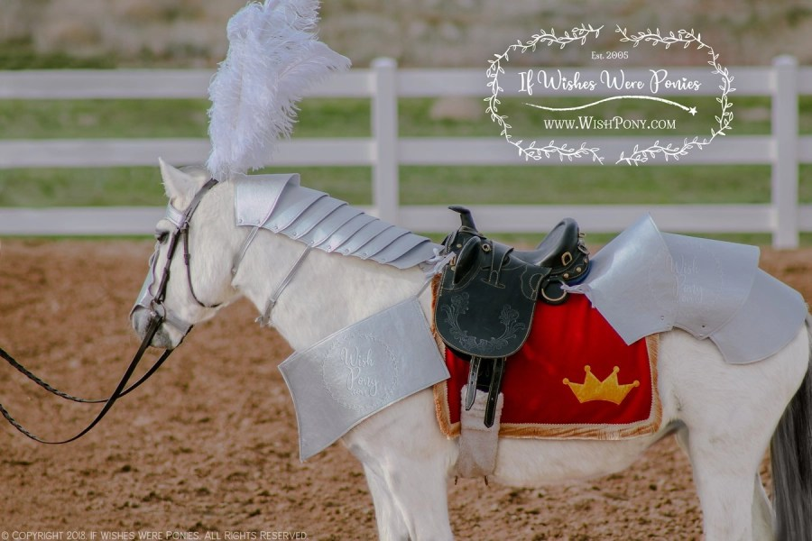Medieval Horse Armour Costume