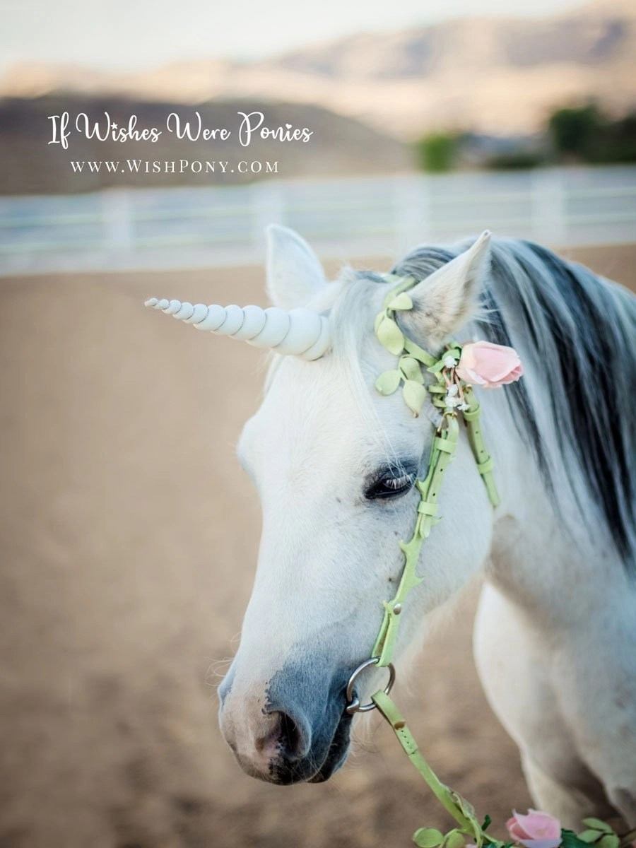White Unicorn Horn for Horse/Pony