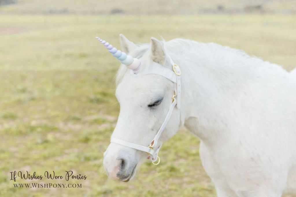 Wishpony Rainbow Unicorn Browband
