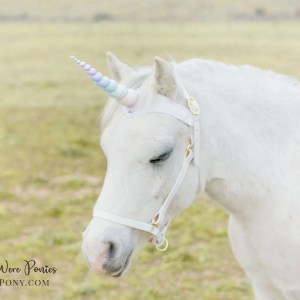 Wishpony Rainbow Unicorn Browband