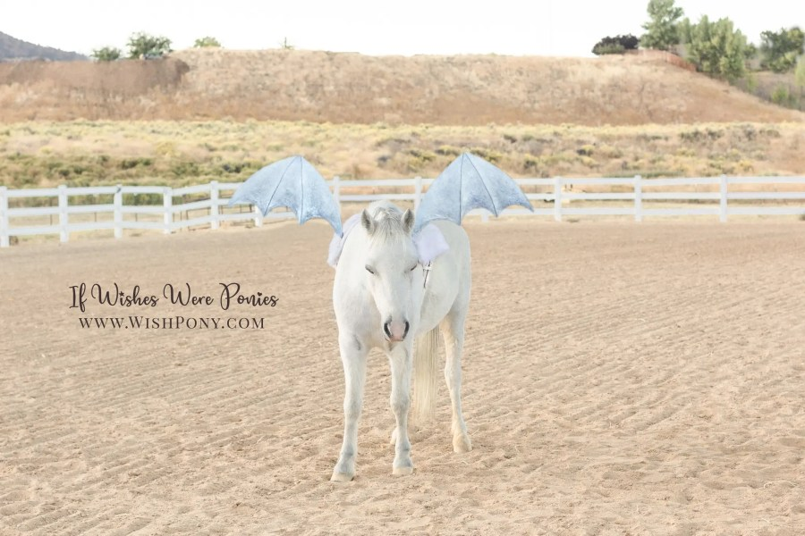 Wishpony.com SIlver Dragon Wings for Horses and Ponies