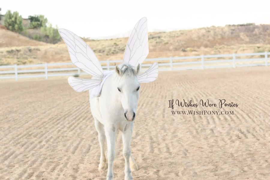 Pale Pink Fairy Wings for Horses and Ponies by Wishpony.com