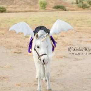Wishpony.com Platinum Dragon Wings for Horses