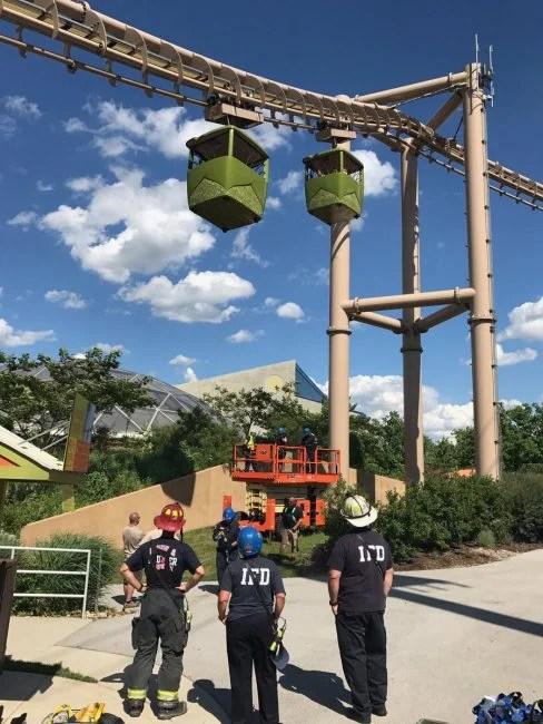 zoo rescue_662952