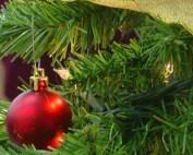 Christmas with Santa (WISH Photo)_778625