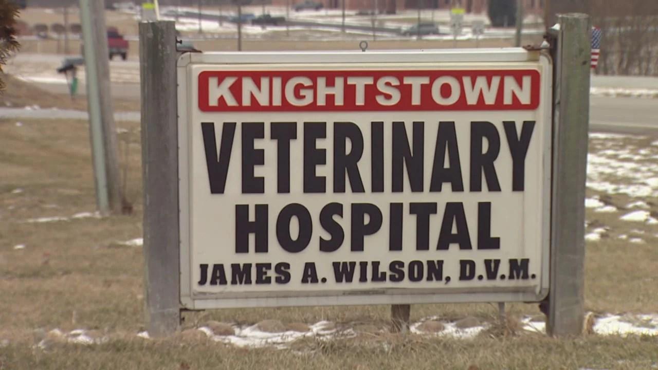 Knightstown vet hospital_818188