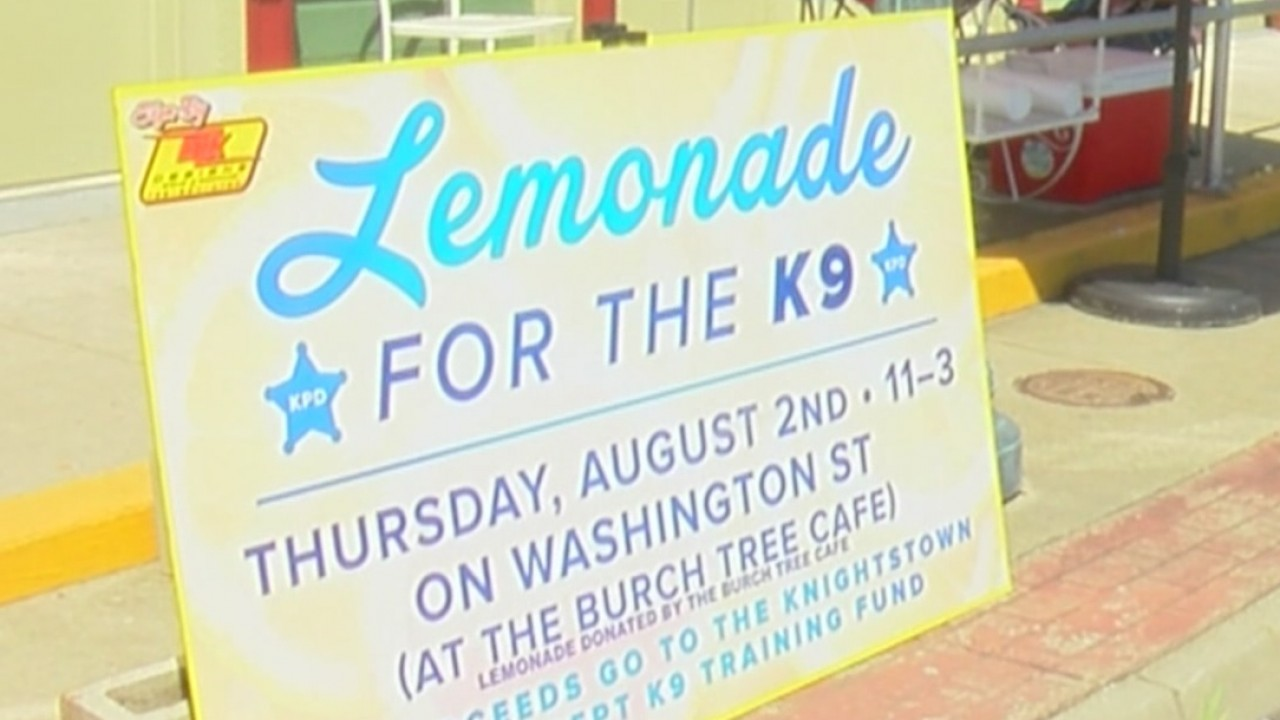 Knightstown_girl_uses_lemonade_stand_to__2_20180802232236