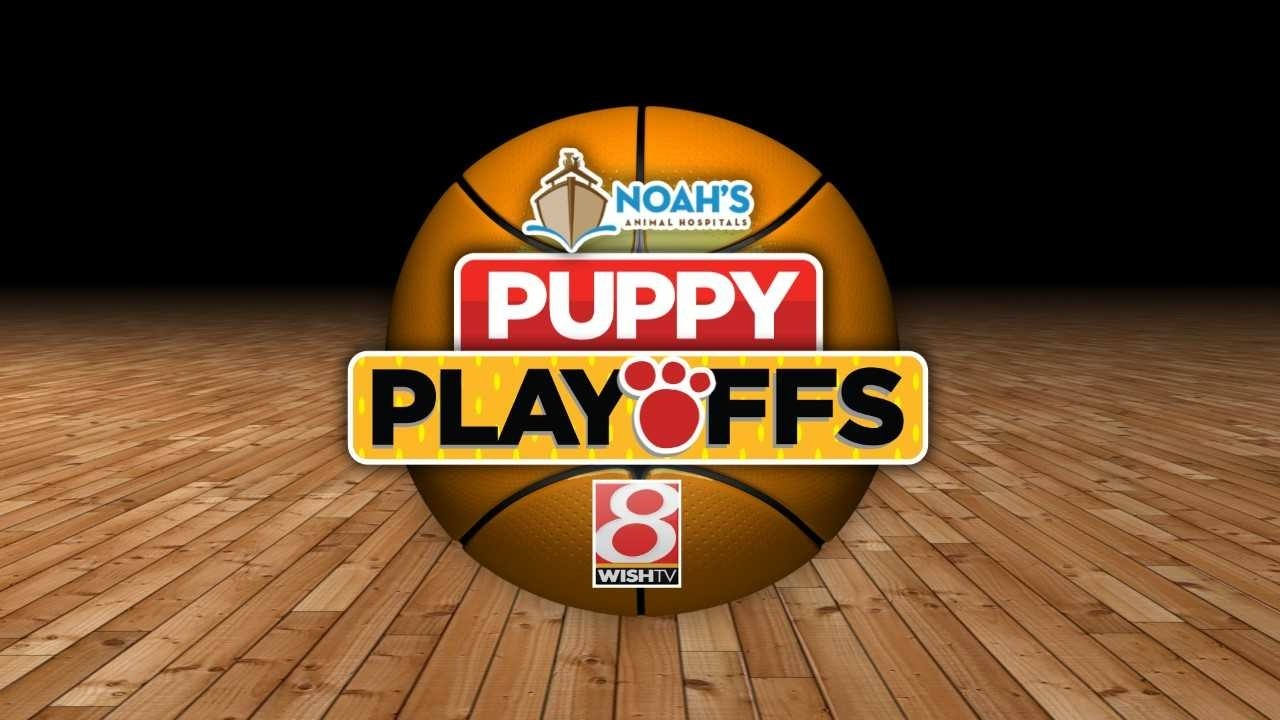 Charlie and Kathleen Kimball talk about Puppy Playoffs