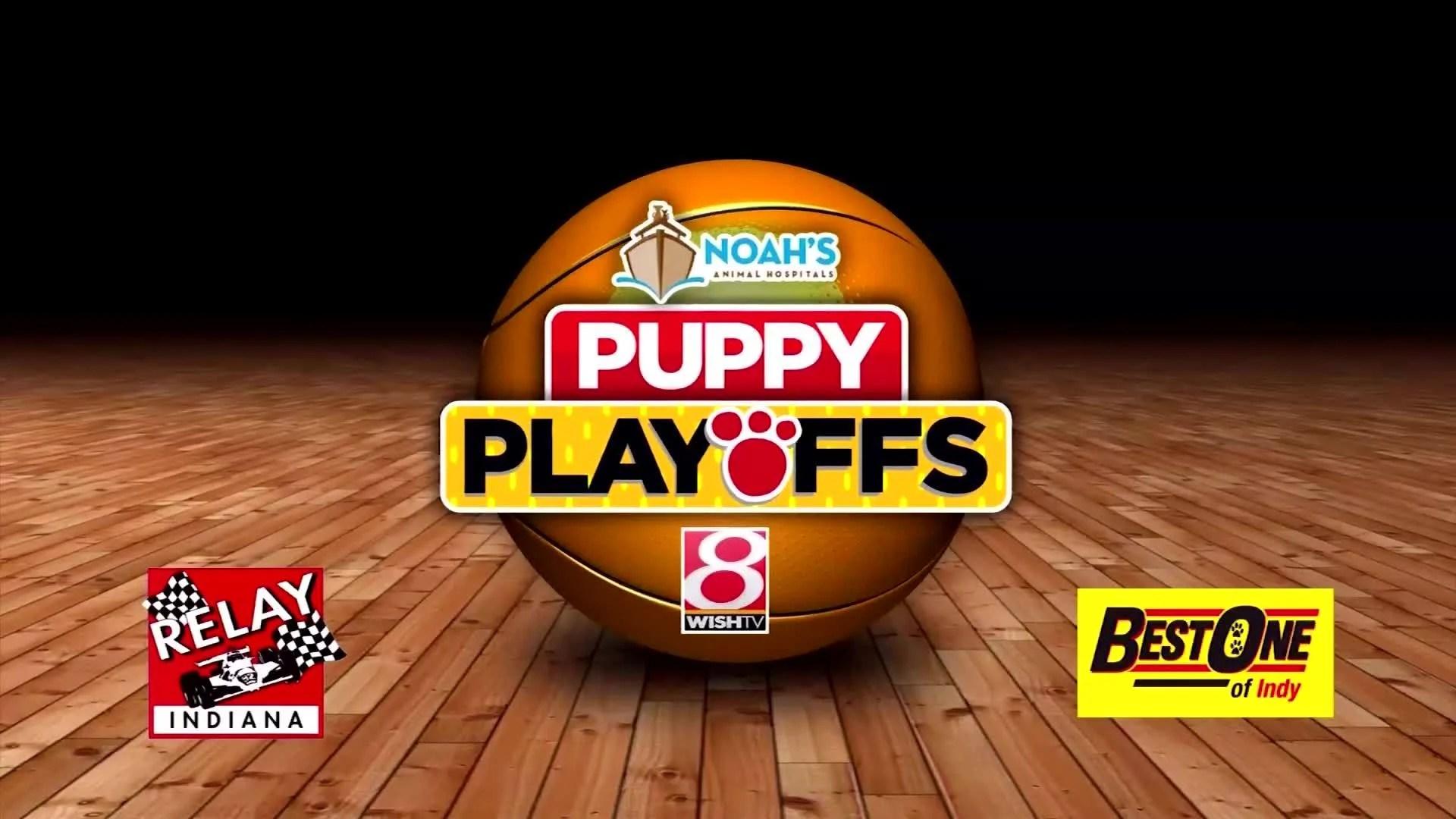 2019 WISH-TV Puppy Playoffs