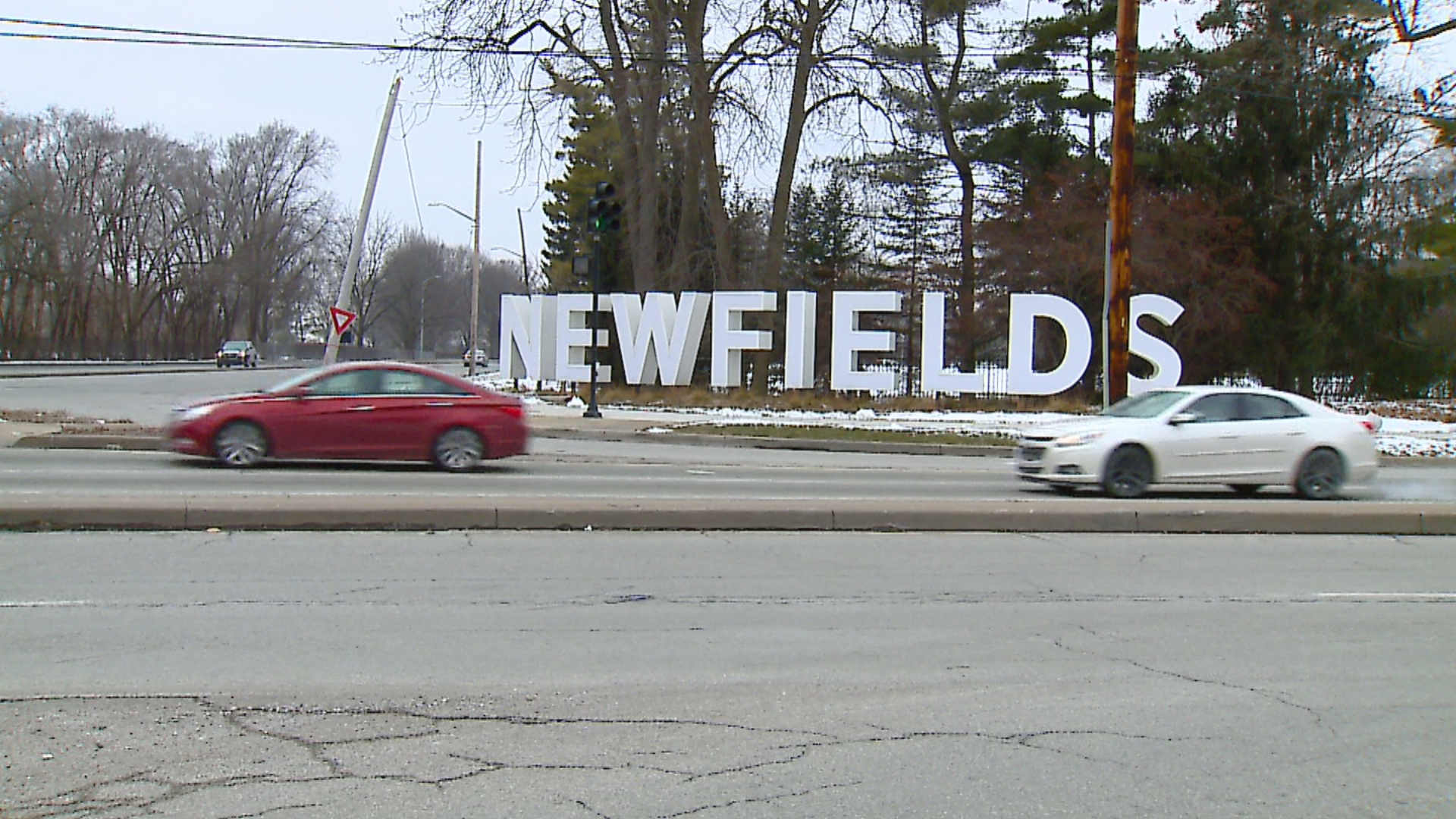 Petition calls for removal of Newfields CEO after job listing about 'traditional, core, white audience' - WISHTV.com