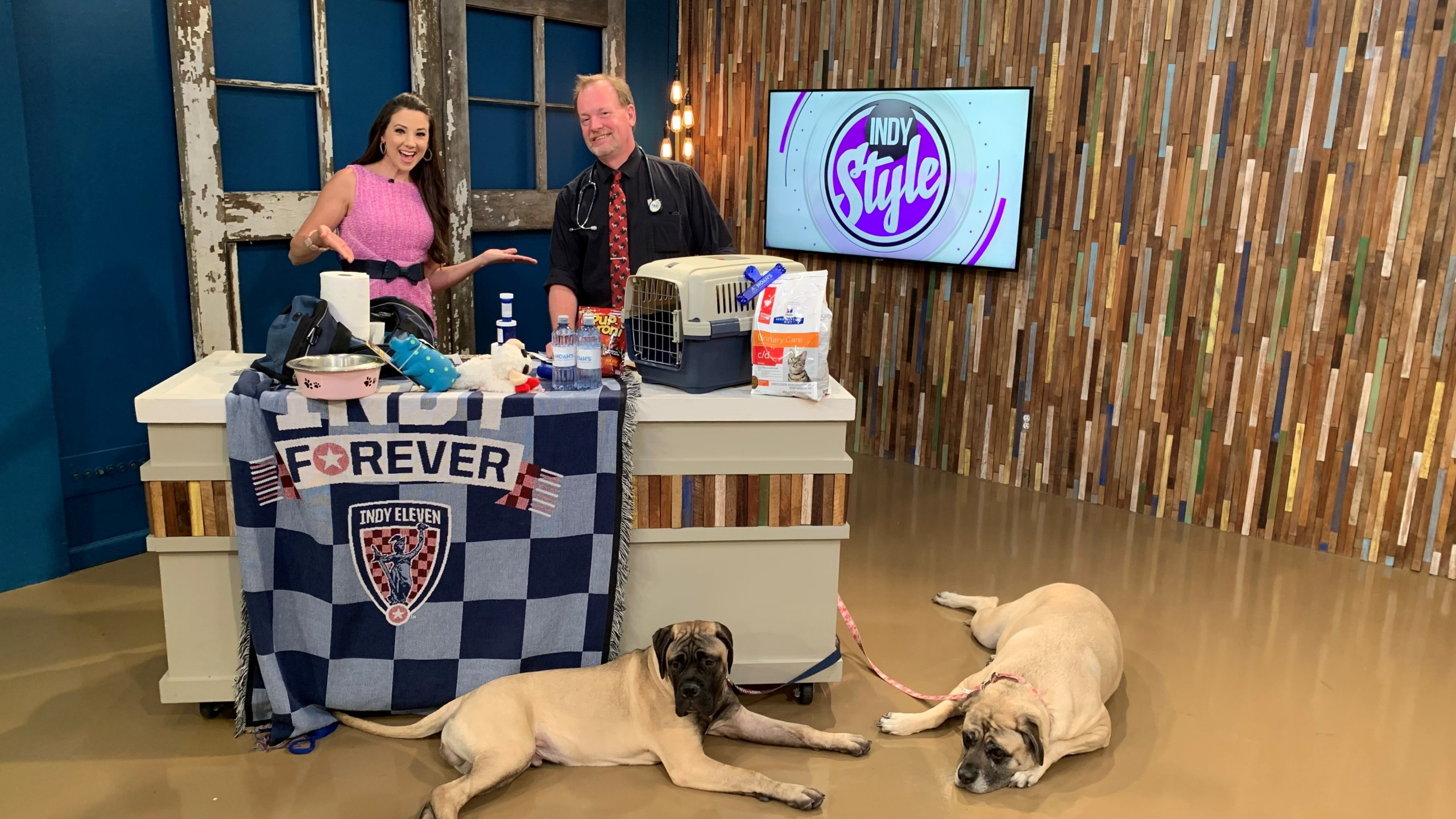 National Pet Preparedness Month: Creating an emergency plan for you, your pets - WISH-TV
