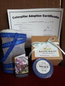 Butterfly Wish Kit