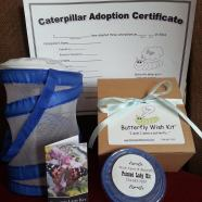 """Butterfly Wish Kits """"I wish I were a Butterfly"""""""