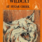 We Killed a Wildcat book cover