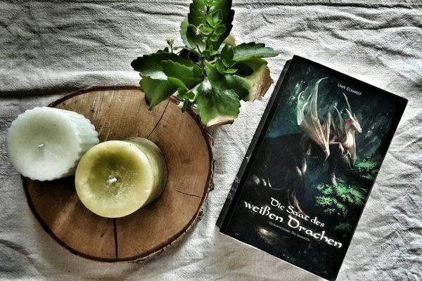 [Fantasy] Uwe Eckardt: Die Saat des weißen Drachen (2017)
