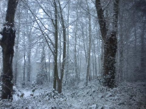 sneeuwklas