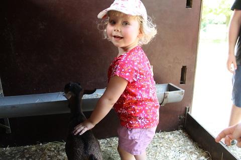 kinderboerderij1