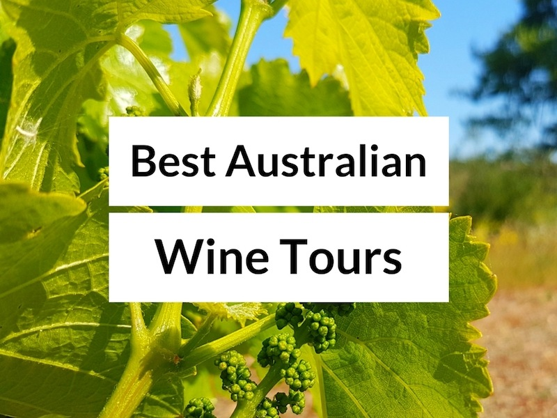 The Best Australian Wine Tours - How to Visit the Australian Wine Regions