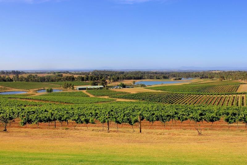 Hunter Valley Wineries Australia wine regions