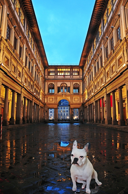 Tina Mars in Florence, a pet-friendly city - photo-composition by Juanfran Álvarez Moreno