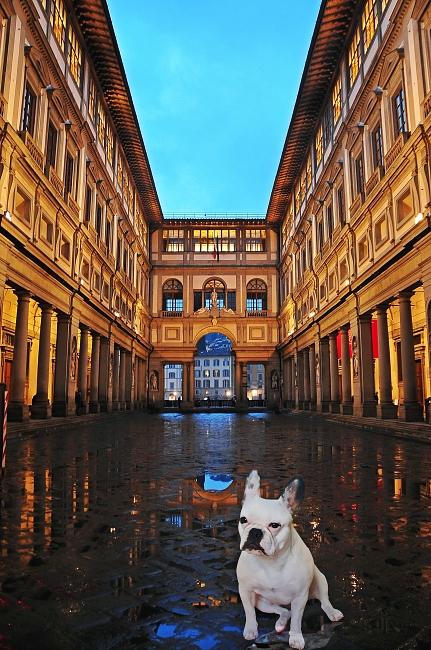 Tina Mars in Florence, a pet-friendly city - photo-composition by Juanfran Álvarez Moreno