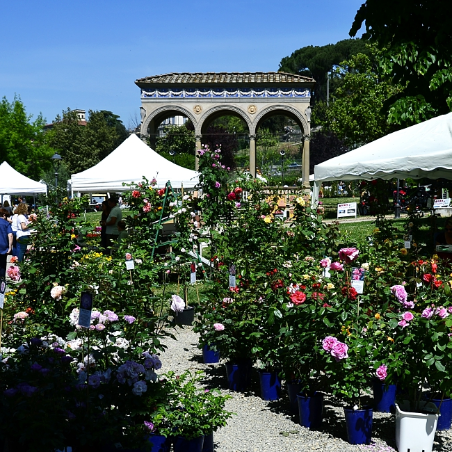 Gardens of Florence #8: giardino dell'Orticultura, a locals' garden in the city centre