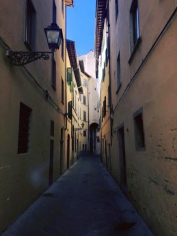 """Vicolo"" or a narrow street of Florence"
