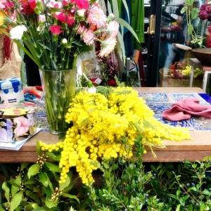 mimosa - Festa della Donna - International Women's Day - Florence