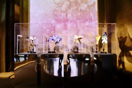 'La botanica di Leonardo,' multimedia exhibition at Santa Maria Novella Museum, Florence