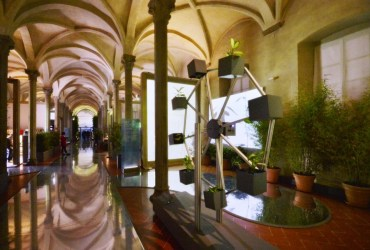 'The Botany of Leonardo,' exhibition at Santa Maria Novella Museum