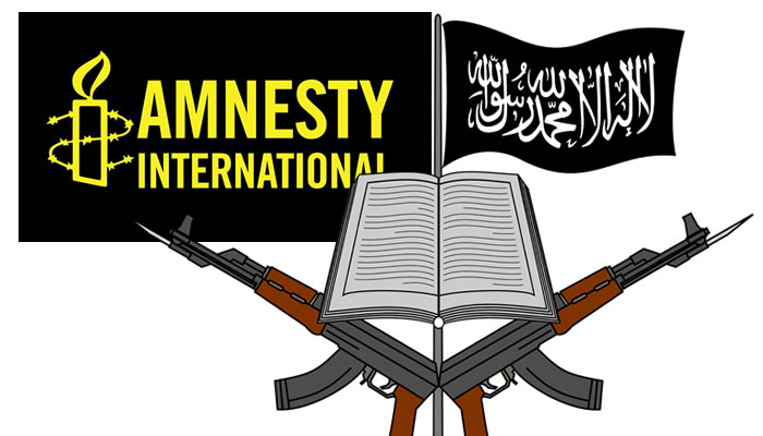 Report knocks Amnesty International, Foreign agents for hindering success on war against insurgency
