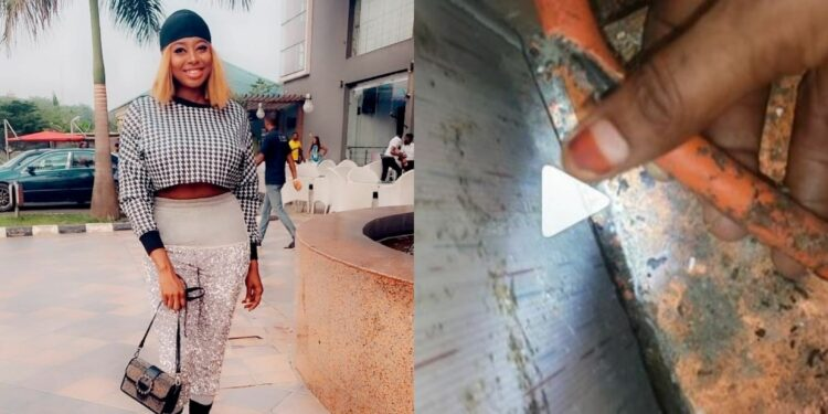 VIDEO: How rats almost caused gas explosion in my home, Lady reveals