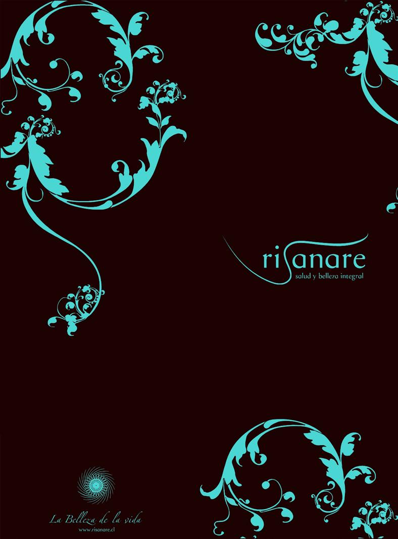 Risanare-brochure