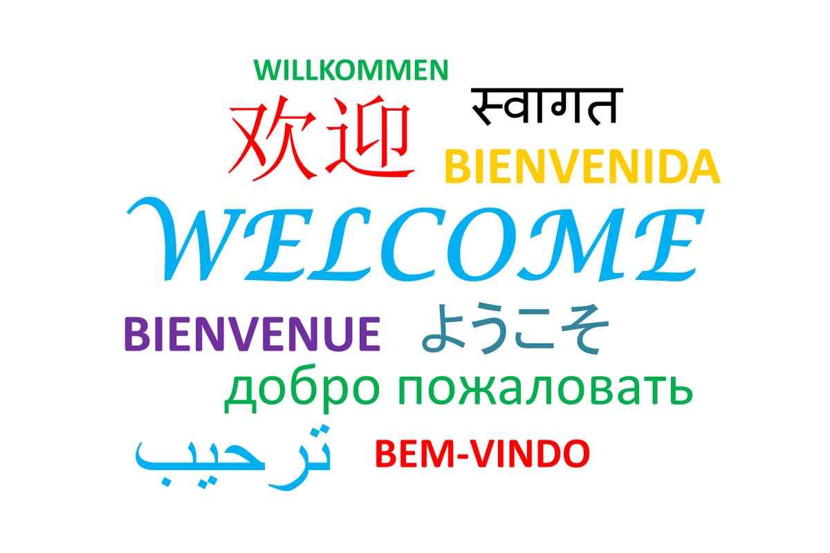 لغة عرض مدونة ووردبريس وبلوجر