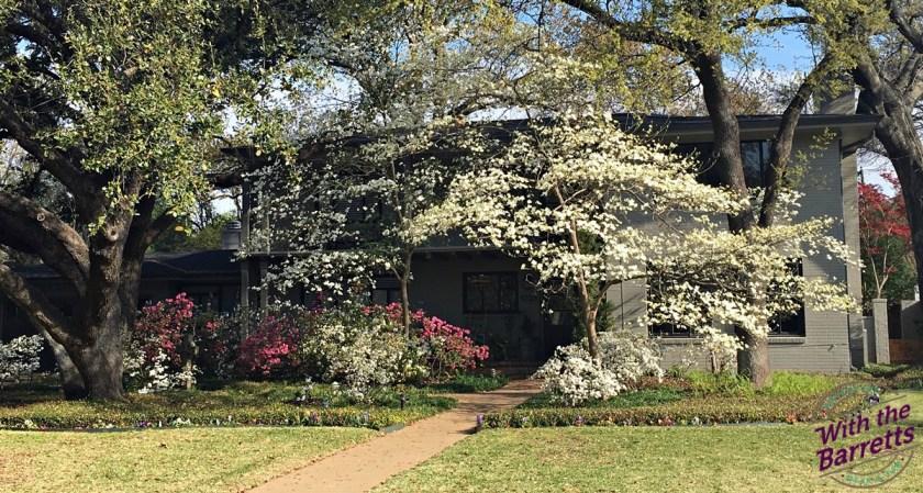 Springtime Fort Worth