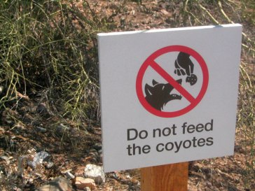 Living With Coyotes Sign