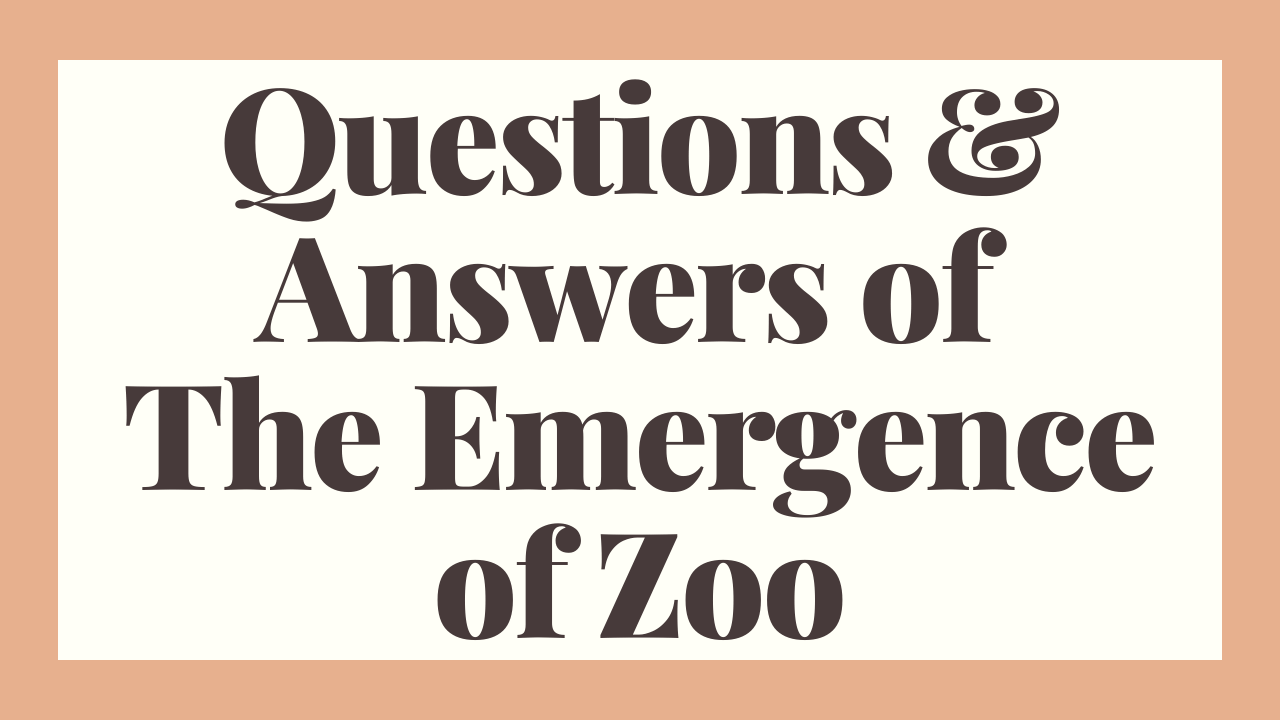 Questions & Answers Of The Emergence Of Zoo