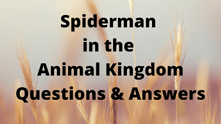 Spiderman in the Animal Kingdom Questions & Answers
