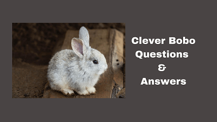 Clever Bobo Questions & Answers
