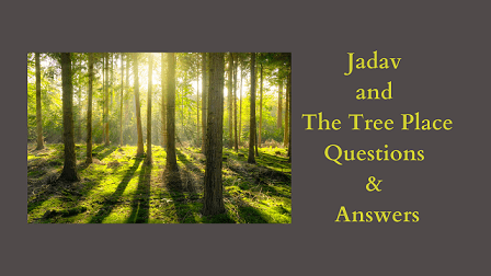 Jadav and the Tree Place Questions & Answers