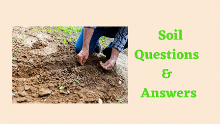 Soil Questions & Answers