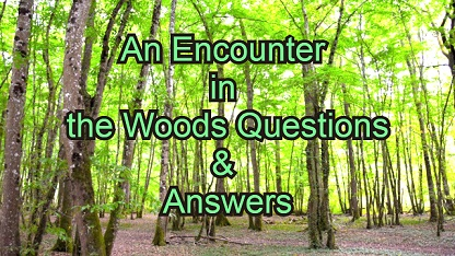 An Encounter in the Woods Questions & Answers