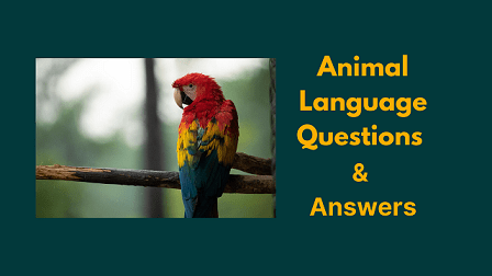 Animal Language Questions & Answers